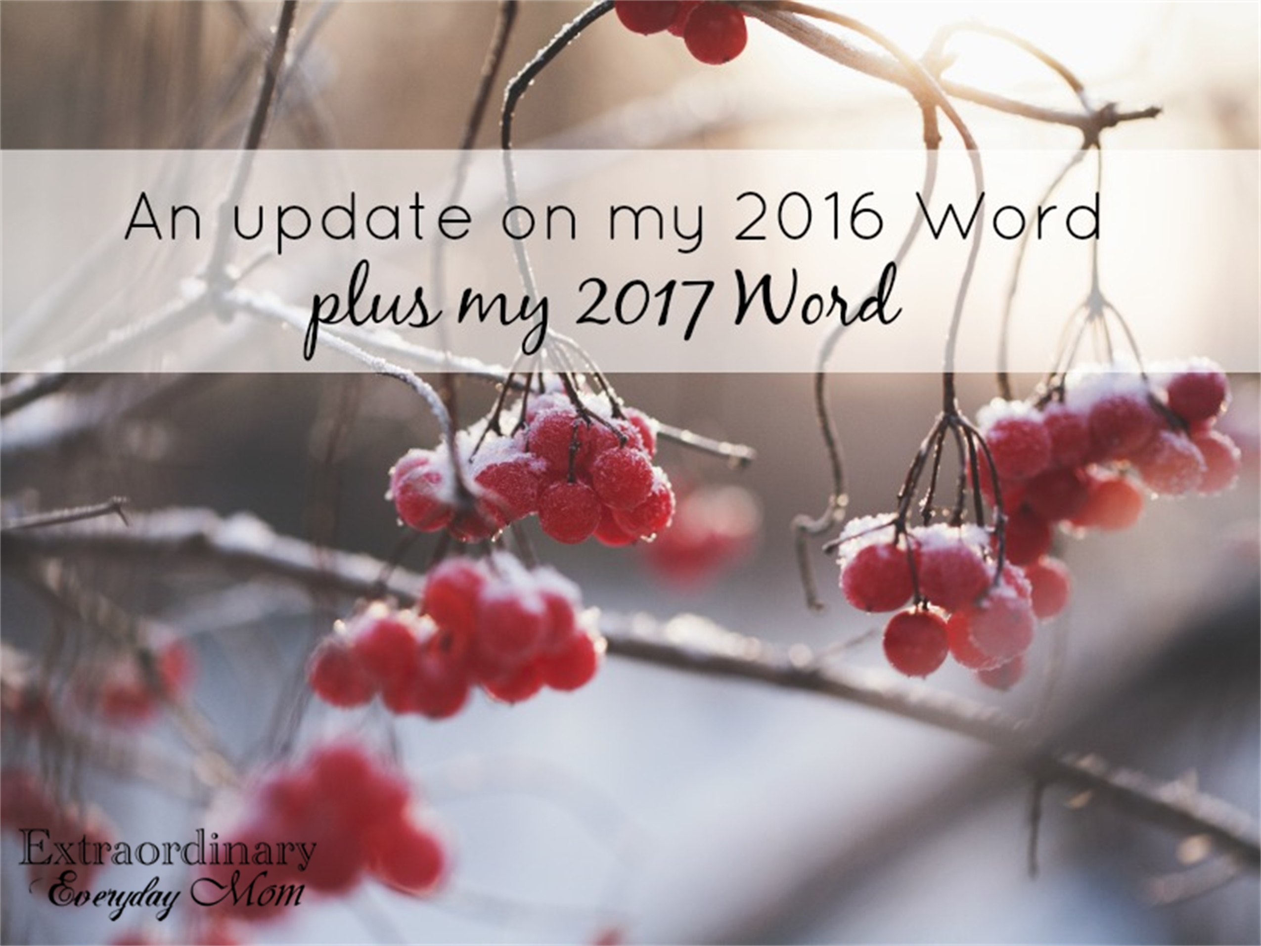 An update on my 2016 Word plus my 2017 Word