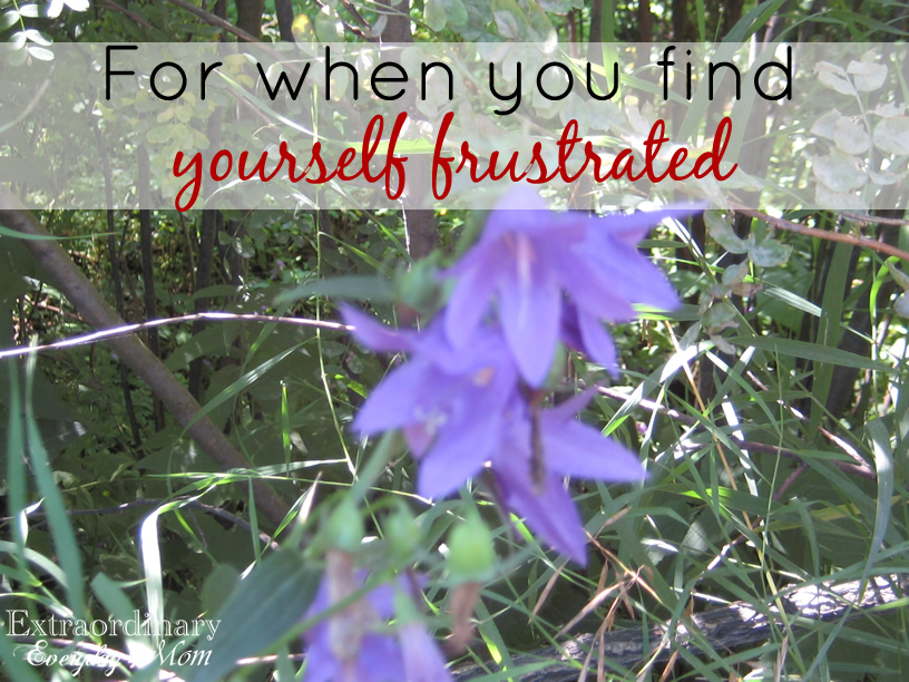 For when you find yourself frustrated