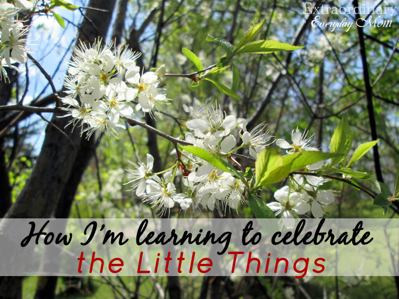How I'm learning to celebrate the Little Things