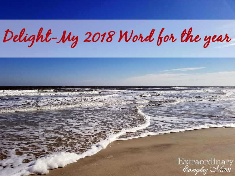 Delight-My 2018 Word for the Year