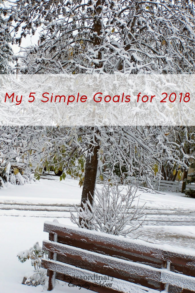 My 5 Simple Goals for 2018